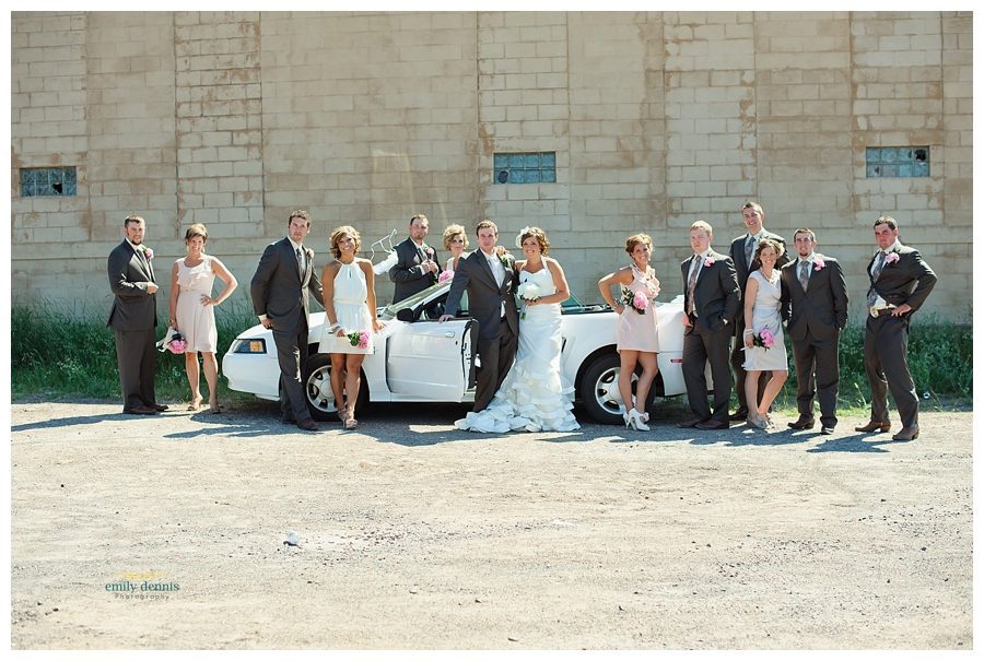 Houghton wedding photo-the bridal party