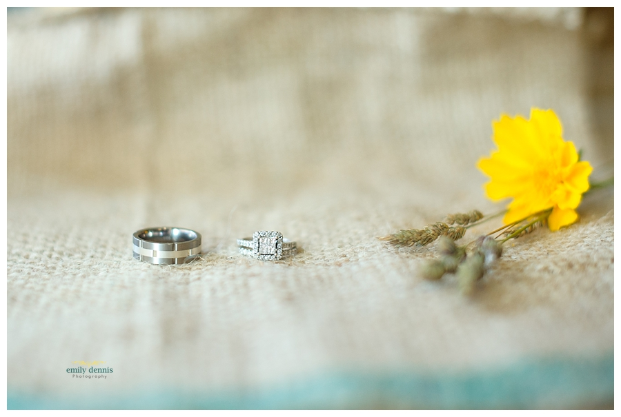 Houghton wedding portraits-rings